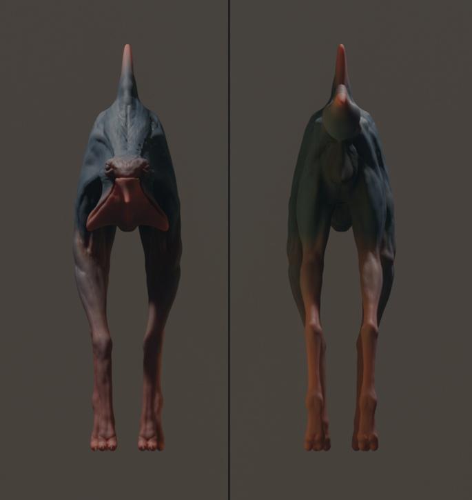 hund (5)